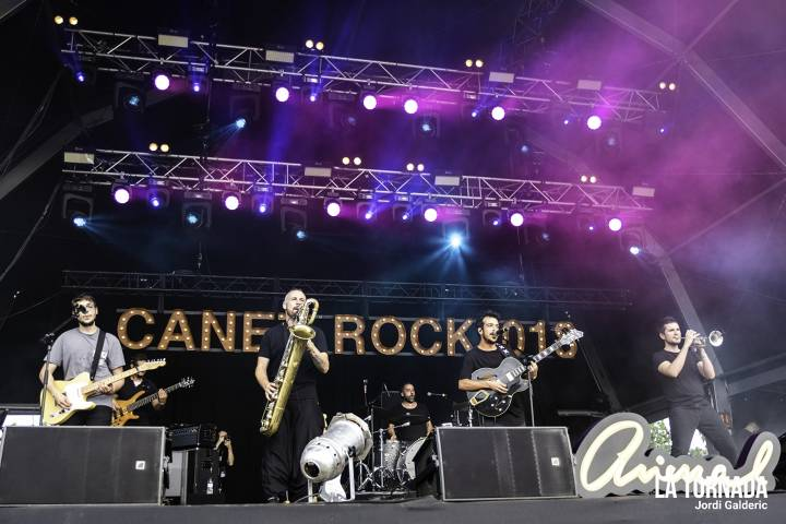Animal a Canet Rock 018
